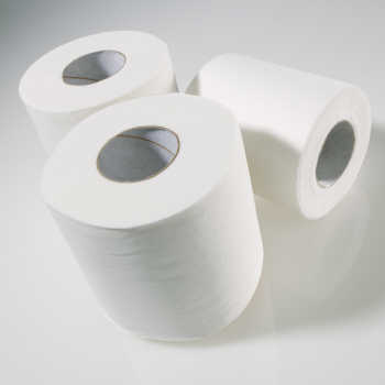 Toilet Tissue- 320 sheet